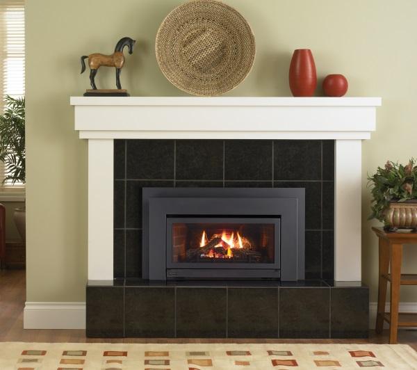 Regency Fireplace Insert Reviews: Regency E21 Small Gas Insert